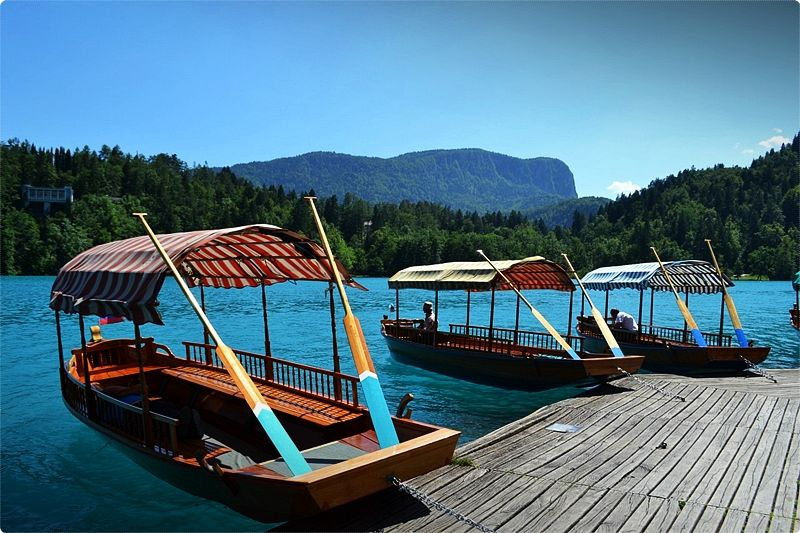 Trips to the island of Bled are possible by the unique boats which are rowed in a standing position.